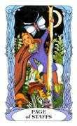 Page of Wands Tarot card in Tarot of a Moon Garden Tarot deck