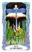 Ace of Swords Tarot card in Tarot of a Moon Garden deck
