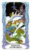 Knight of Swords Tarot card in Tarot of a Moon Garden deck