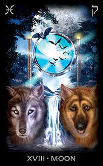 The Moon Tarot Card - Tarot of Dreams Tarot Deck