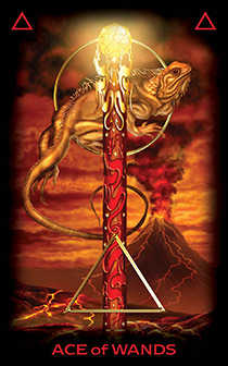 Ace of Staves Tarot Card - Tarot of Dreams Tarot Deck