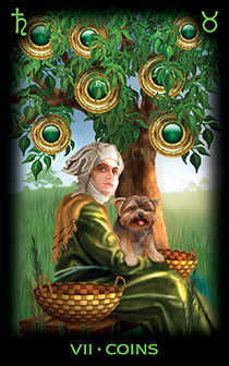 Seven of Coins Tarot Card - Tarot of Dreams Tarot Deck