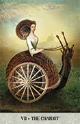 The Chariot Tarot card in Tarot of Mystical Moments deck