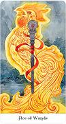 Ace of Wands Tarot card in Tarot of the Golden Wheel deck