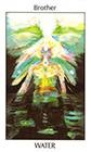 tarot-spirit - Brother of Water