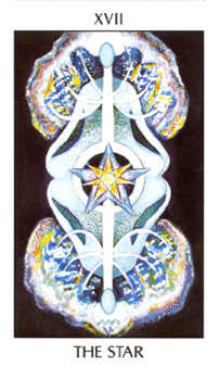 The Star Tarot Card - Tarot of the Spirit Tarot Deck