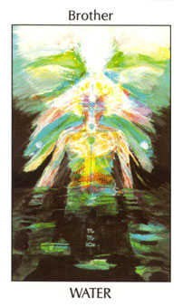 Brother of Water Tarot Card - Tarot of the Spirit Tarot Deck