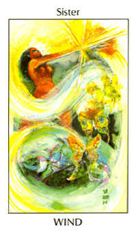 Page of Spades Tarot Card - Tarot of the Spirit Tarot Deck