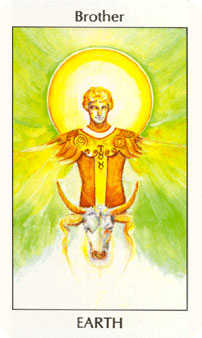Knight of Buffalo Tarot Card - Tarot of the Spirit Tarot Deck