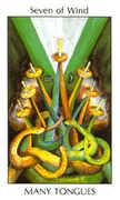 Seven of Wind Tarot card in Tarot of the Spirit Tarot deck