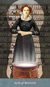 Ace of Wands Tarot card in Dreamkeepers Tarot deck