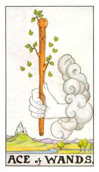 Ace of Batons Tarot Card - Universal Waite Tarot Deck