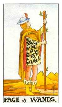 Page of Rods Tarot Card - Universal Waite Tarot Deck