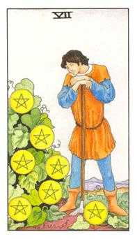 Seven of Pentacles Tarot Card - Universal Waite Tarot Deck