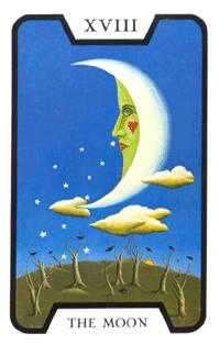 The Moon Tarot Card - Tarot of the Witches Tarot Deck