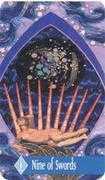 Nine of Swords Tarot card in Zerner Farber Tarot deck